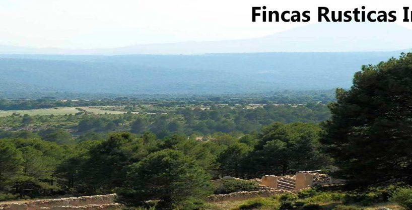 FINCA EN VENTA 460 HAS. LABOR-MONTE CAZA EN ALBACETE