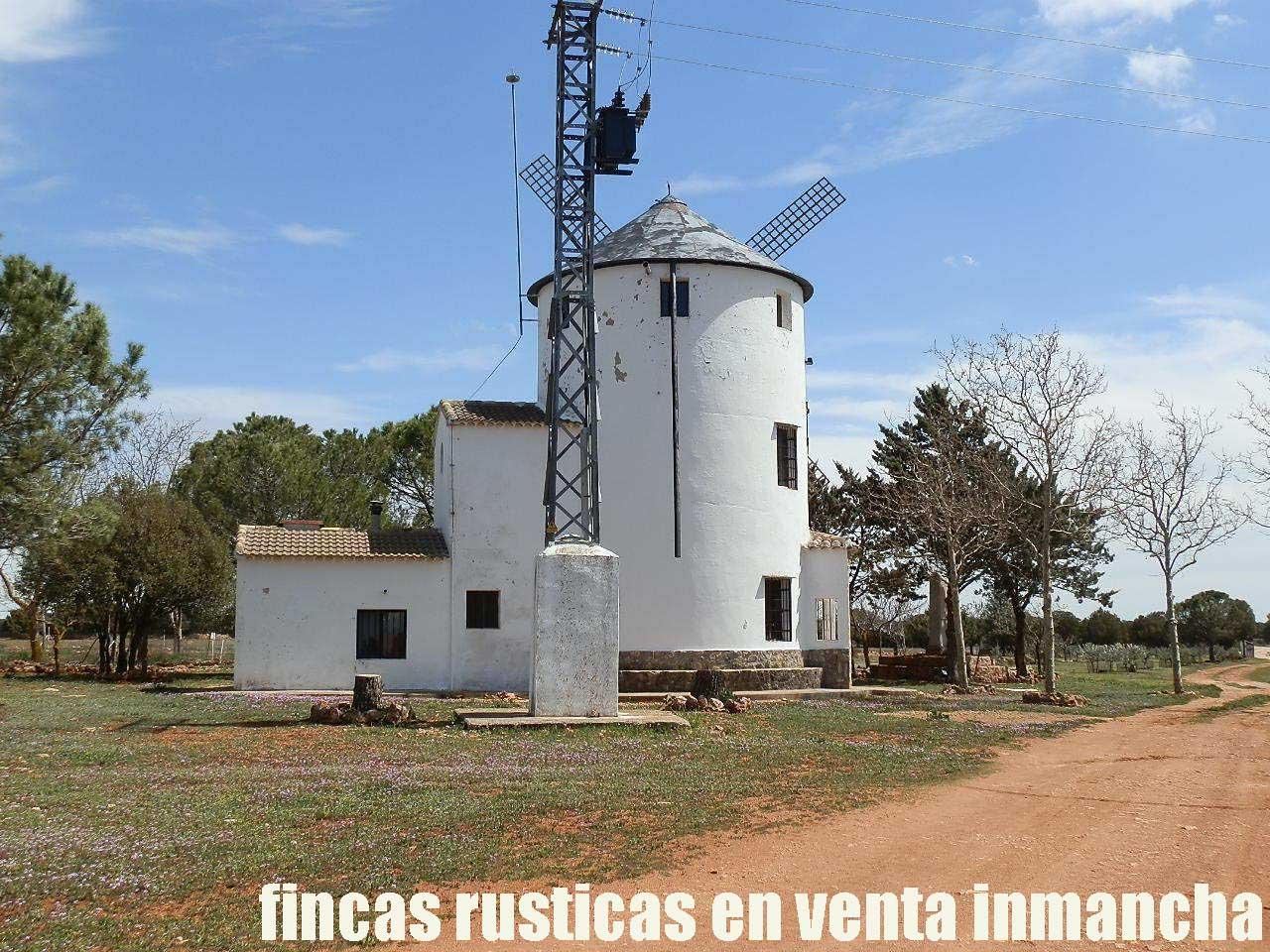371_fincas-en-venta-24