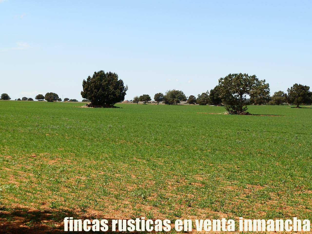 371_fincas-en-venta-35