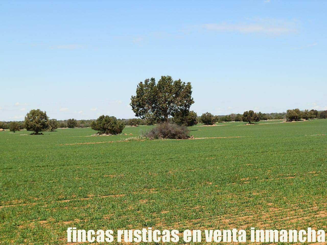 371_fincas-en-venta-36