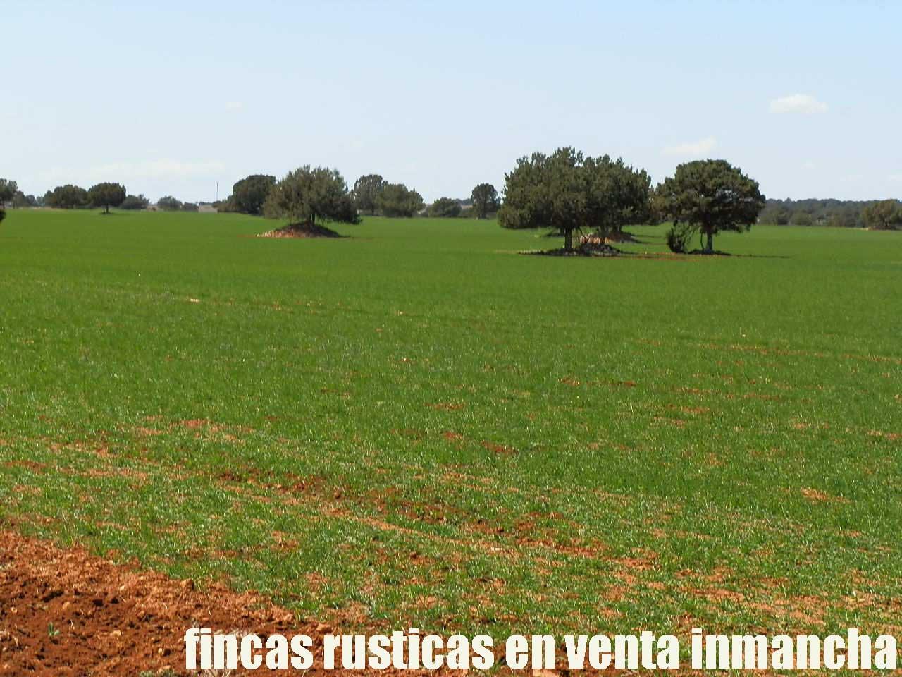 371_fincas-en-venta-37