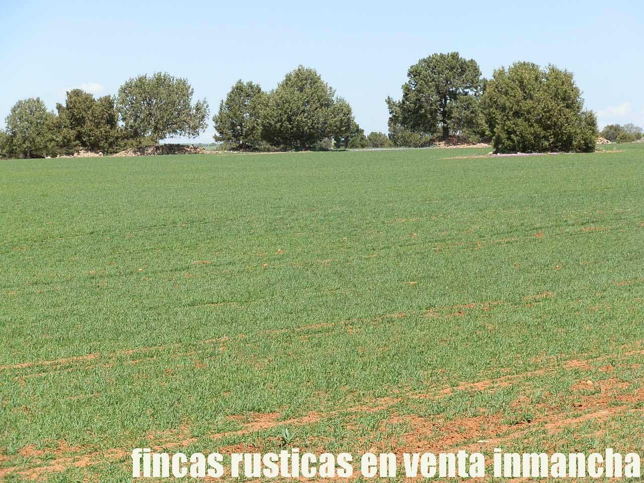 371_fincas-en-venta-39