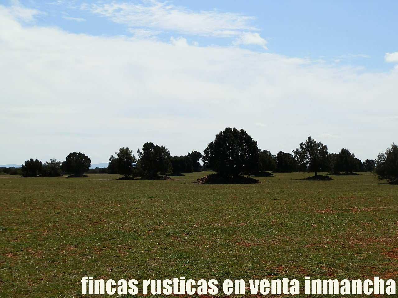 371_fincas-en-venta-40