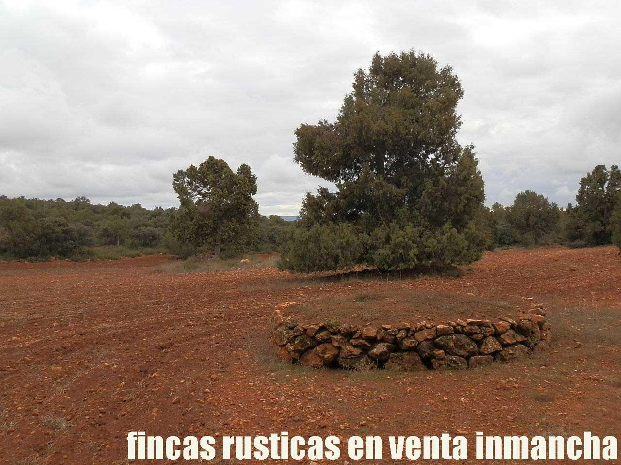 387_fincas-en-venta-022