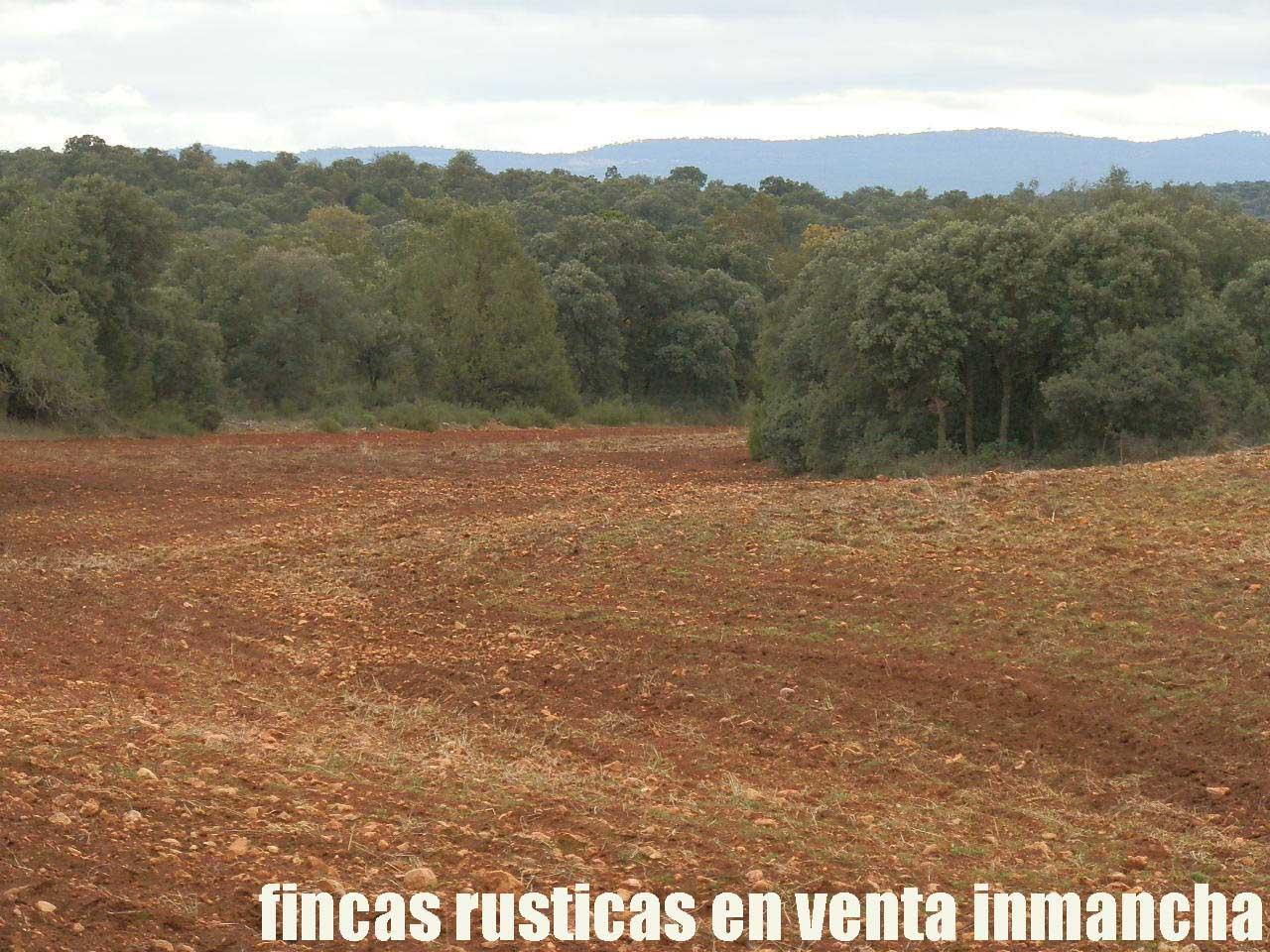 387_fincas-en-venta-028