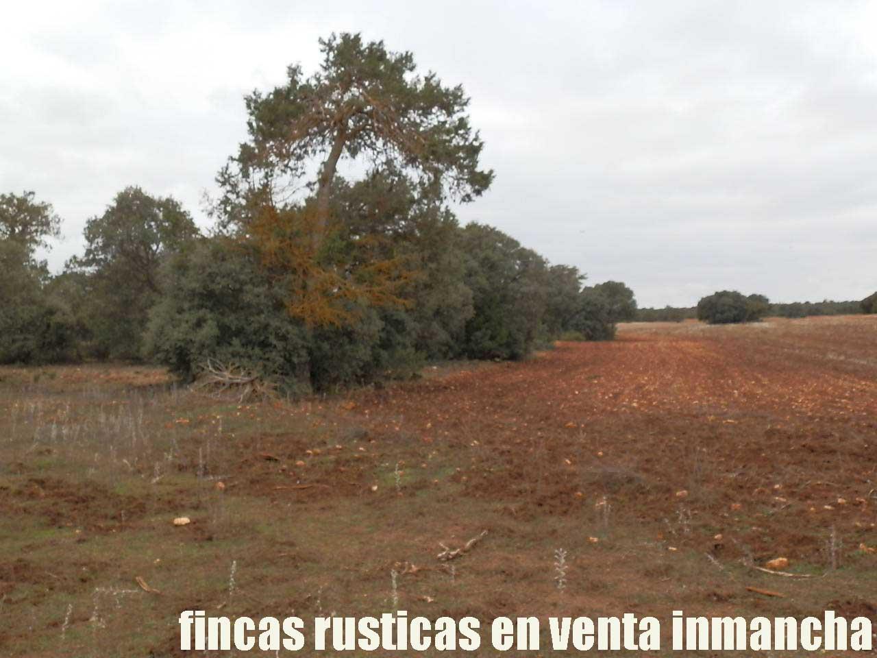 387_fincas-en-venta-030