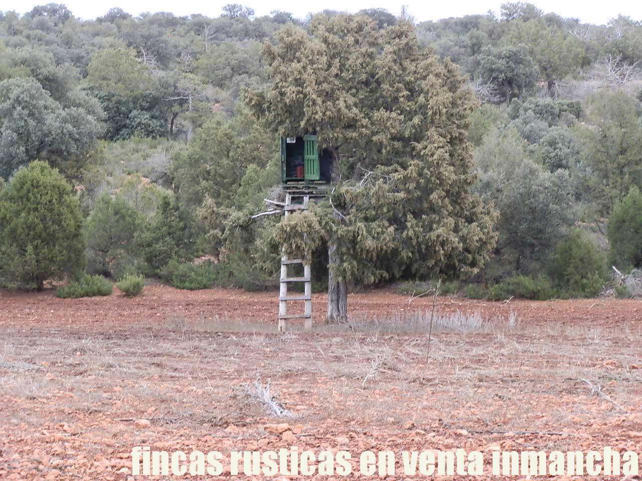 387_fincas-en-venta-036