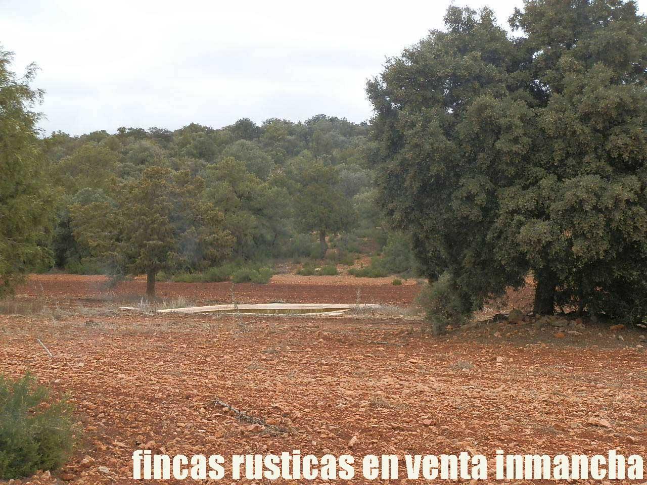 387_fincas-en-venta-037