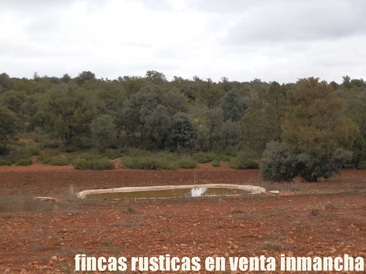 387_fincas-en-venta-045