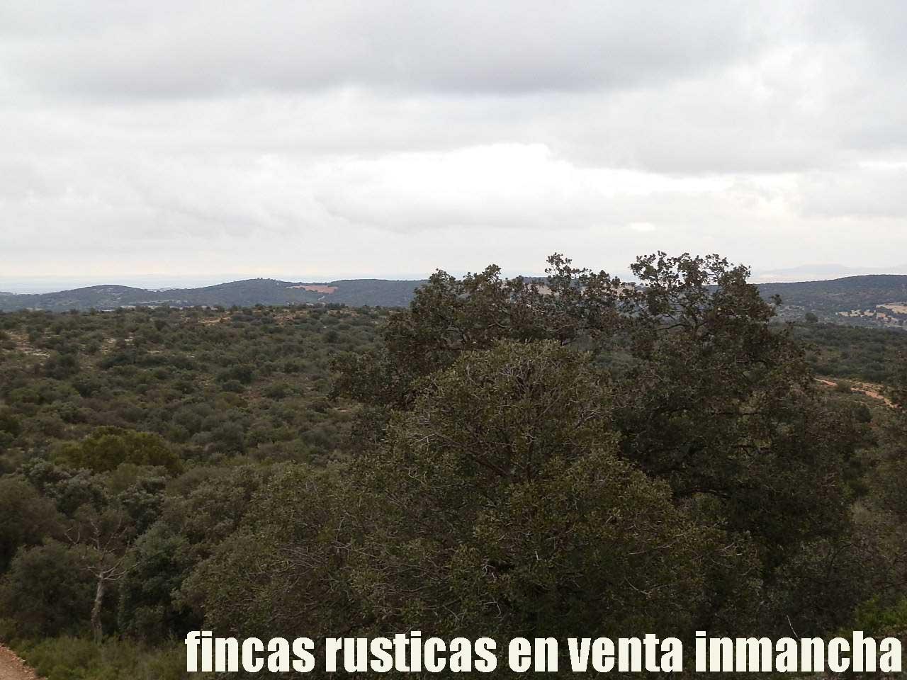 387_fincas-en-venta-049