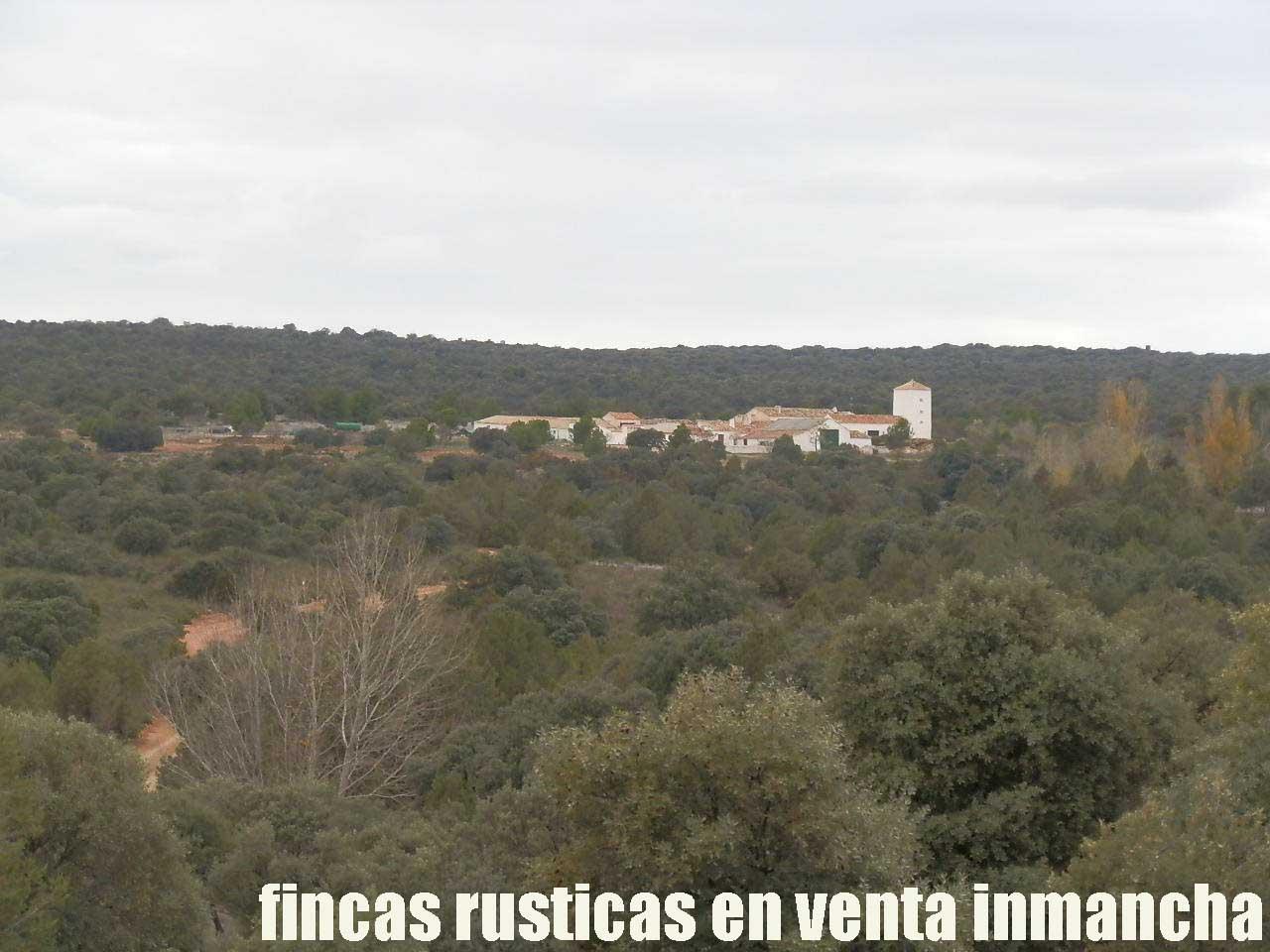 387_fincas-en-venta-070