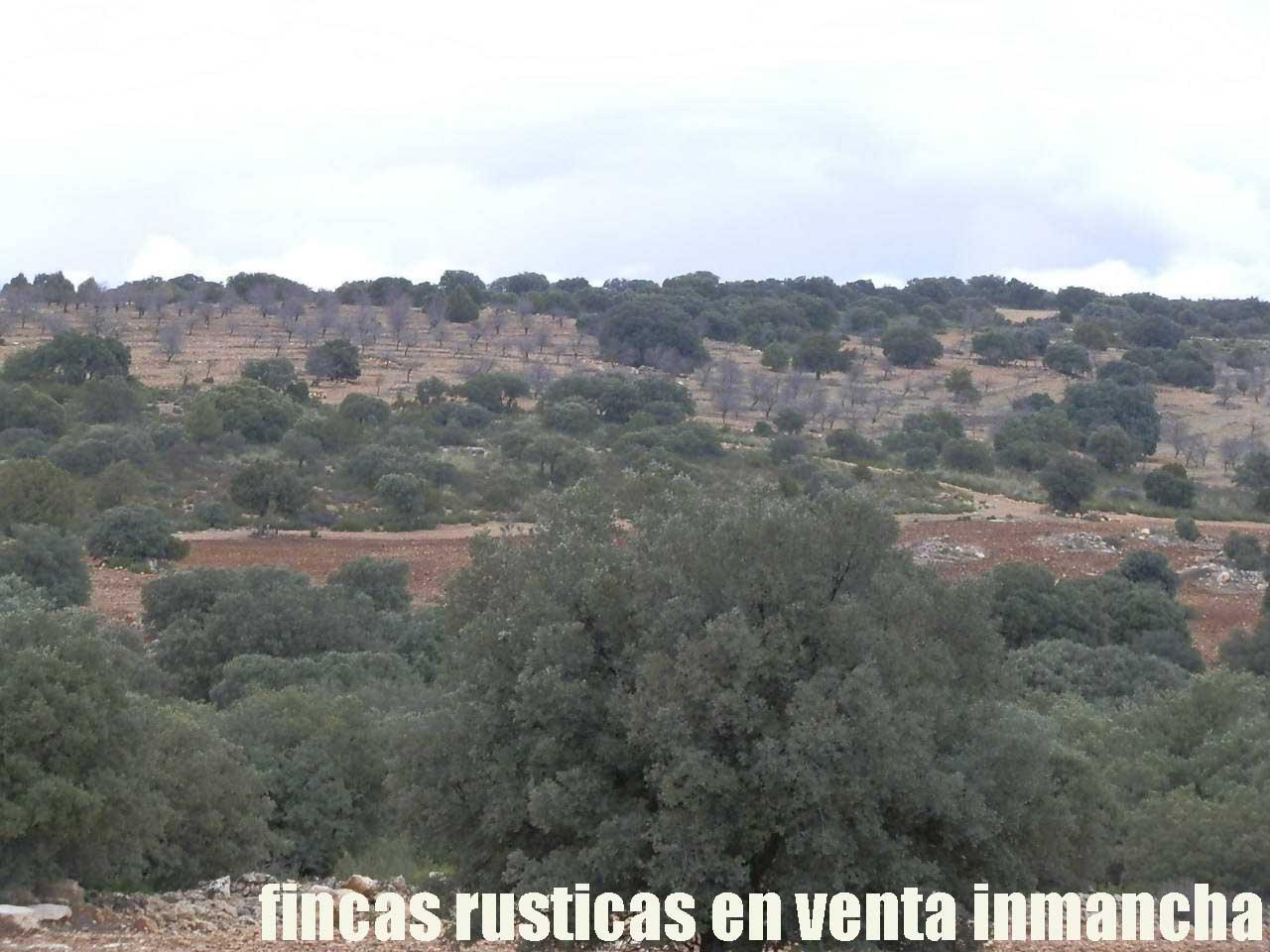 387_fincas-en-venta-072