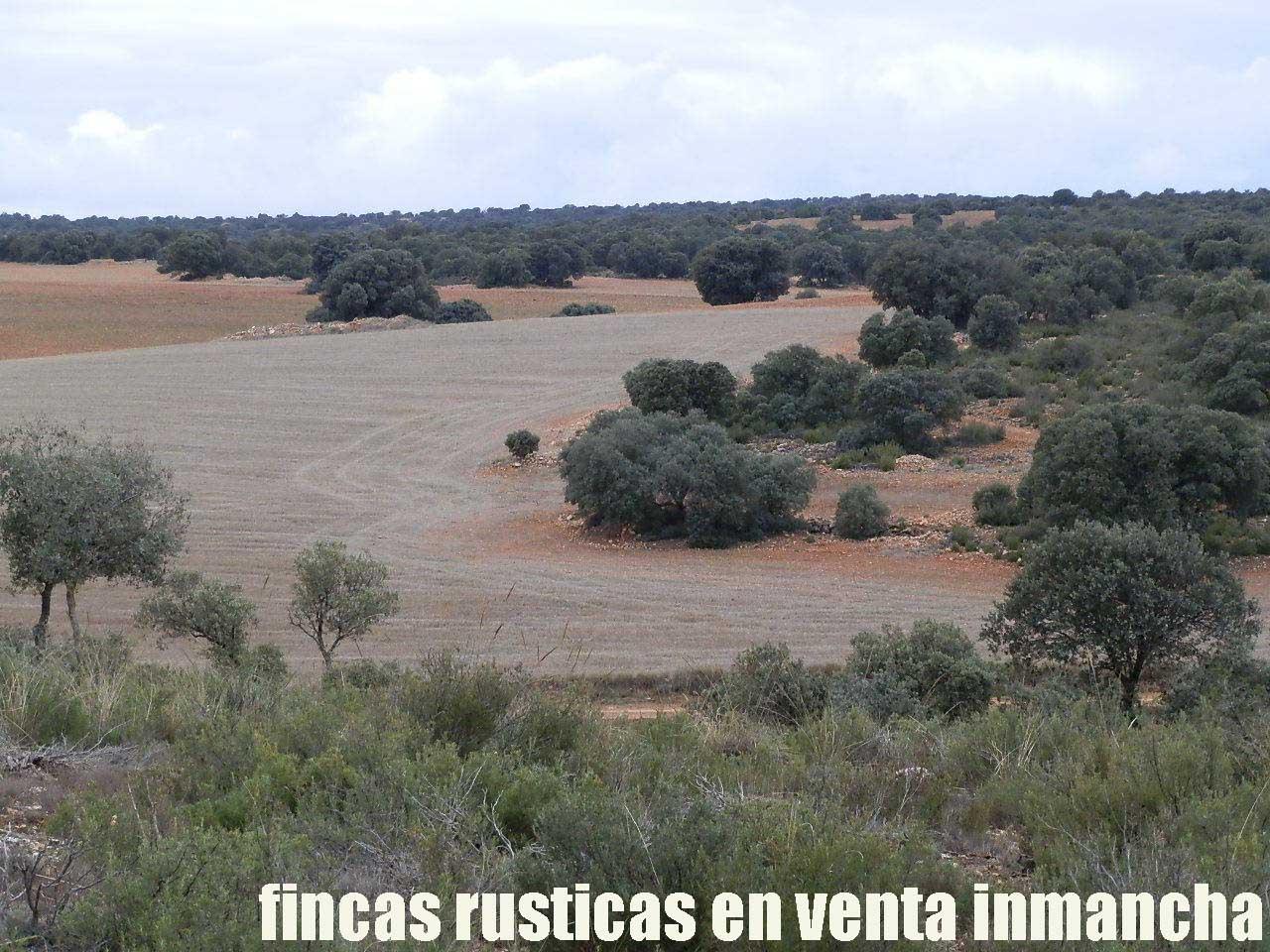 387_fincas-en-venta-073
