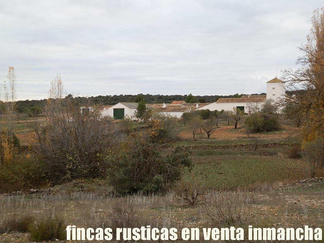 387_fincas-en-venta-076