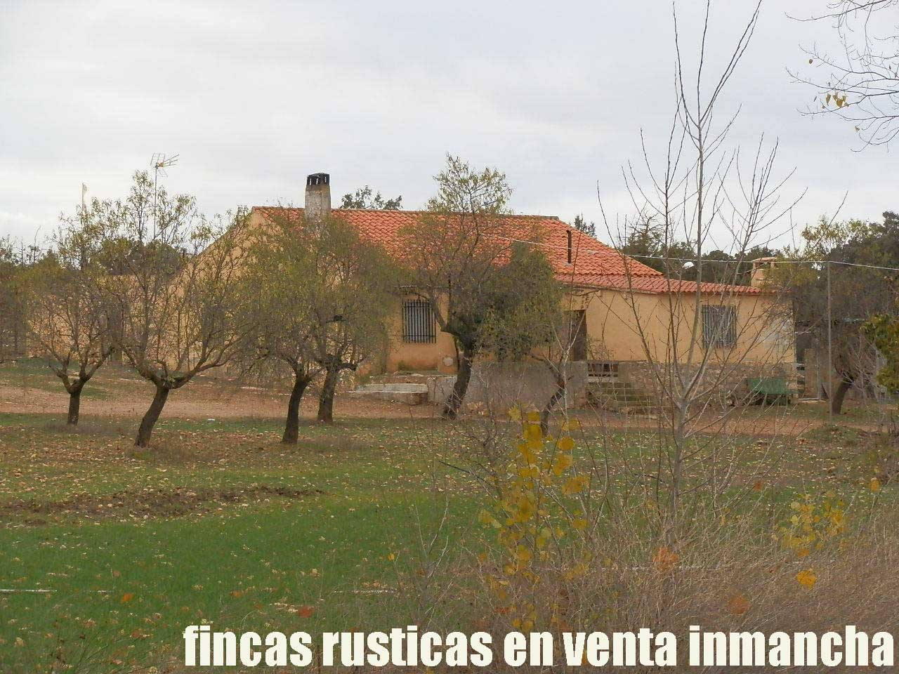 387_fincas-en-venta-082