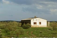 451_fincas-en-venta-29