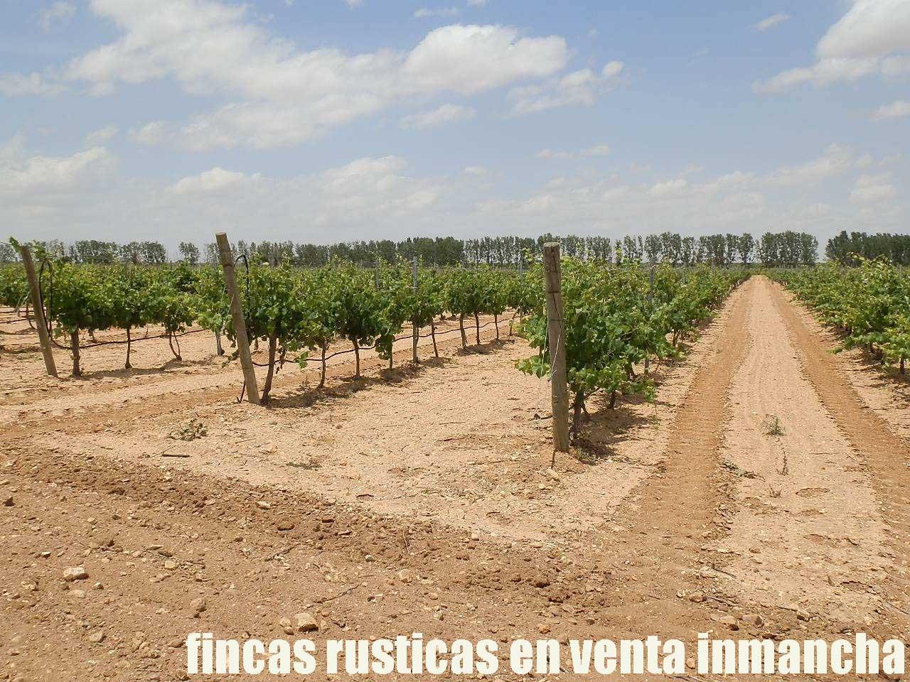461_fincas-en-venta-008