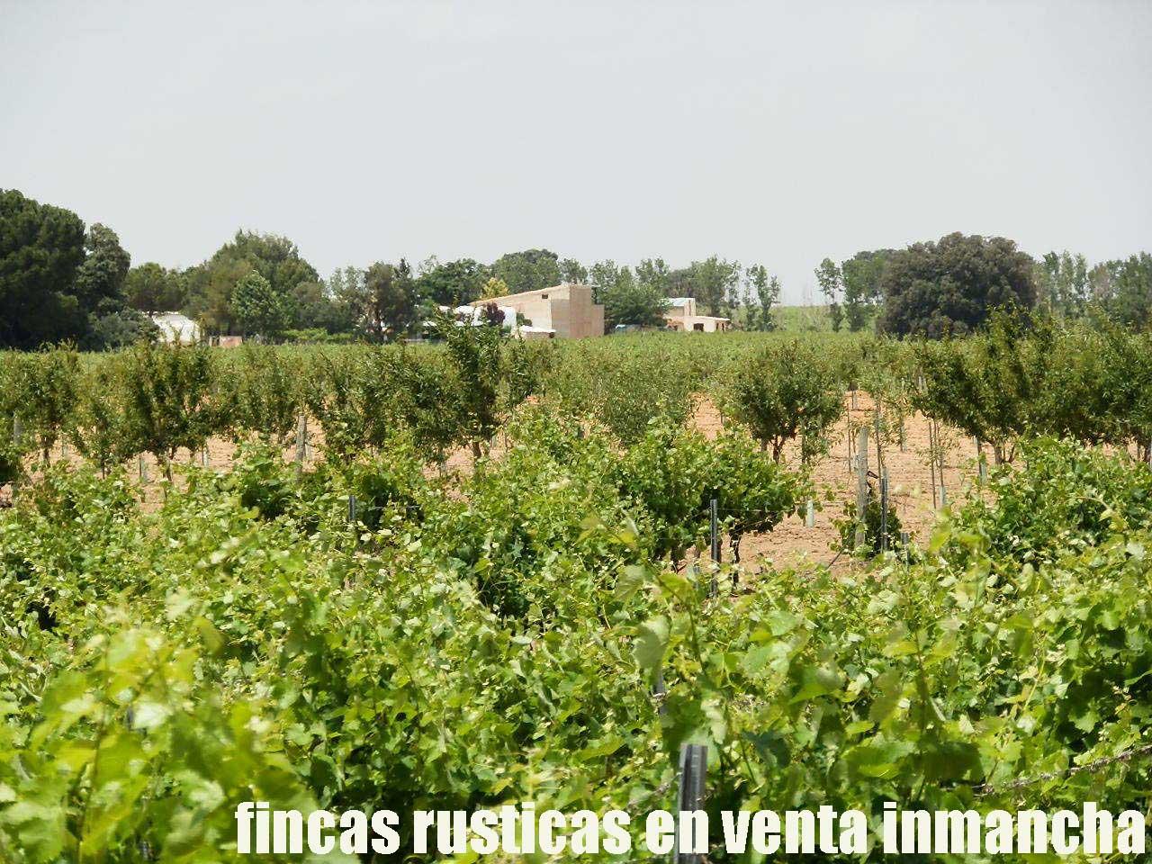 461_fincas-en-venta-029