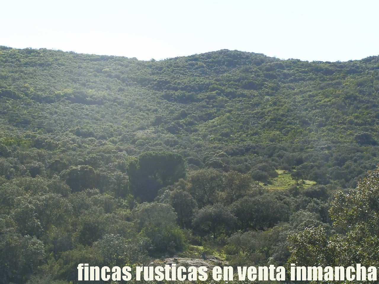 467_fincas-en-venta-003