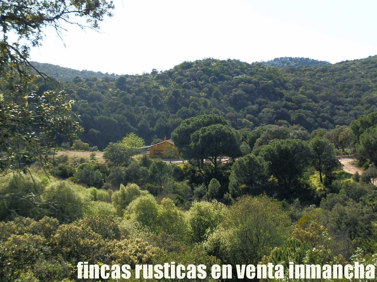 467_fincas-en-venta-010
