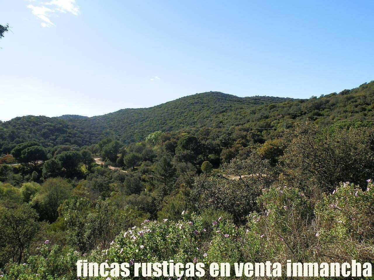 467_fincas-en-venta-012