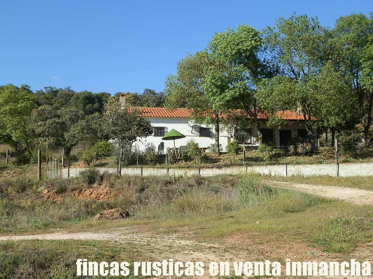 467_fincas-en-venta-019