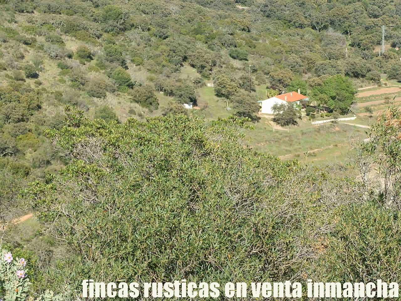 467_fincas-en-venta-030
