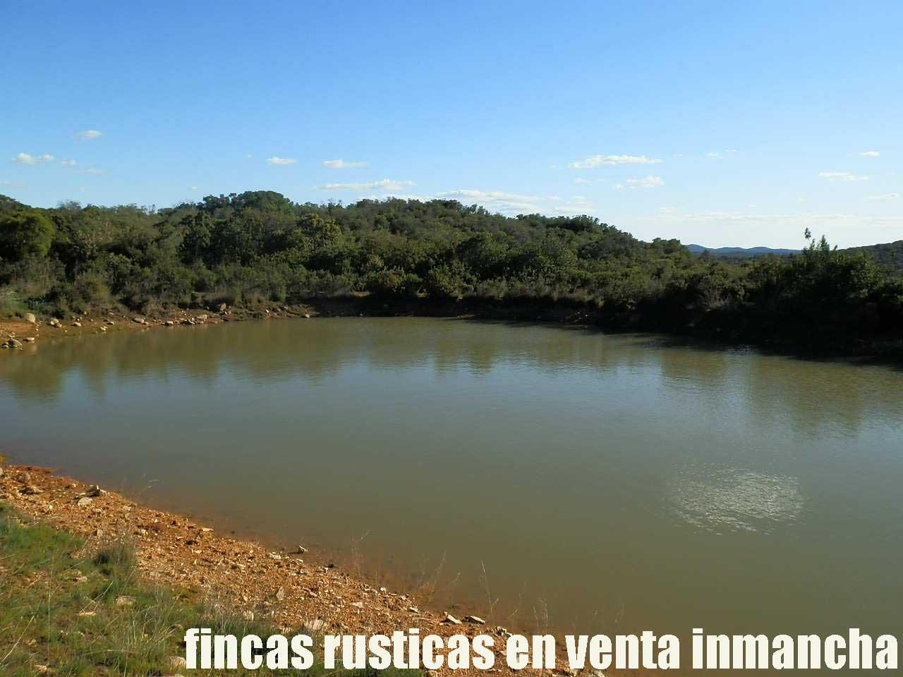 467_fincas-en-venta-039