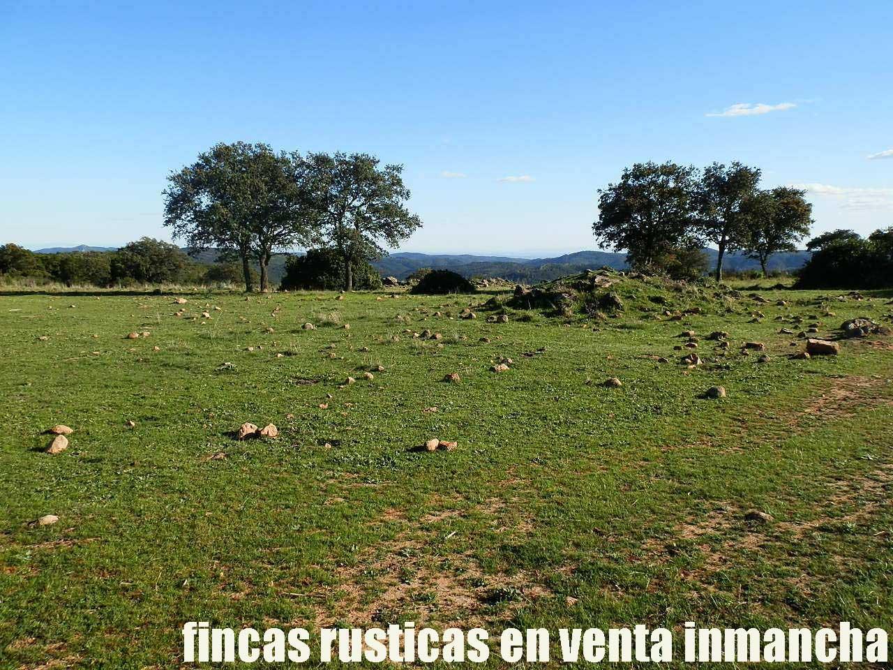 467_fincas-en-venta-042