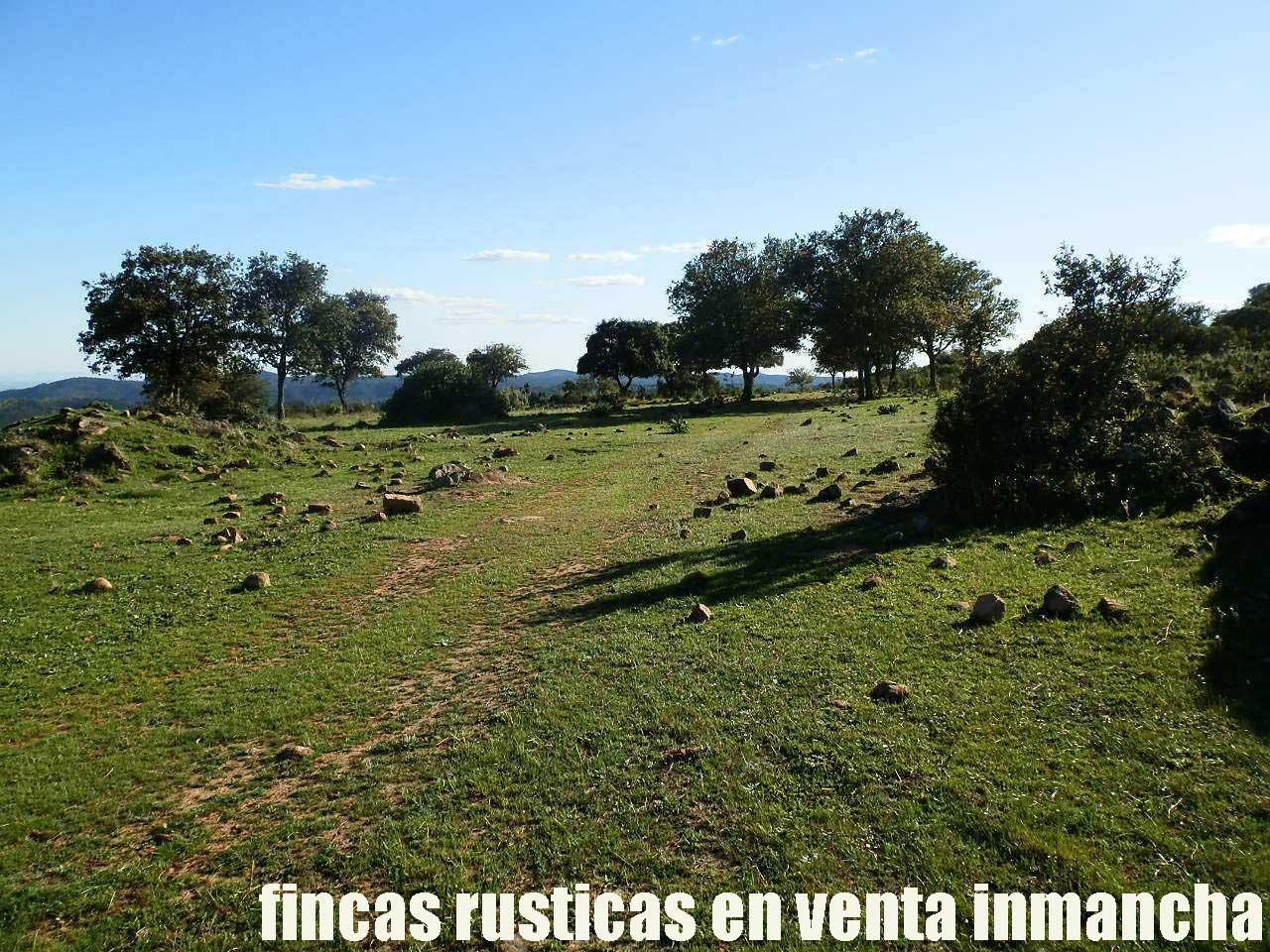 467_fincas-en-venta-043