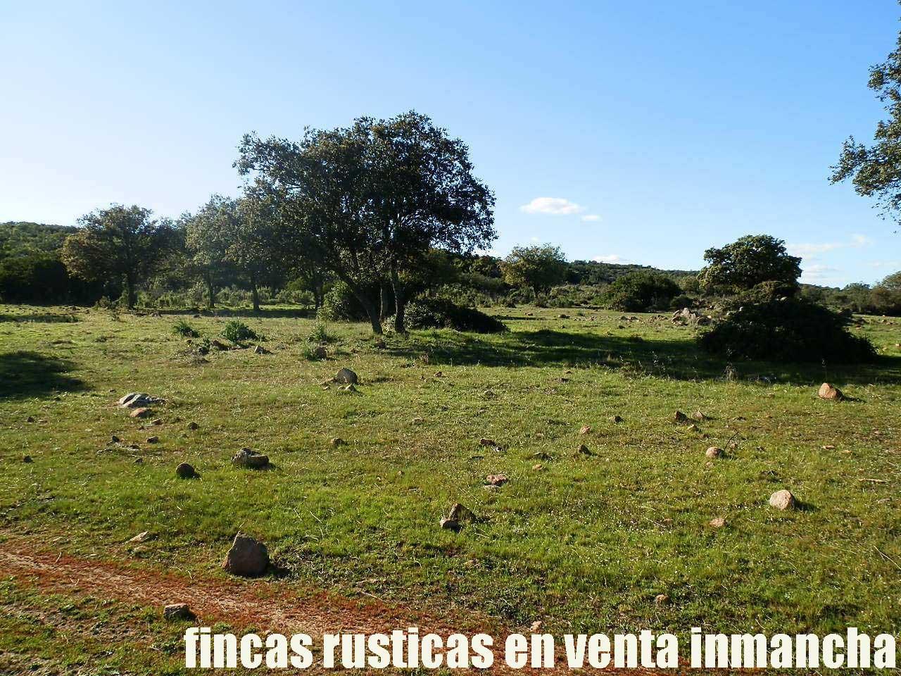 467_fincas-en-venta-046