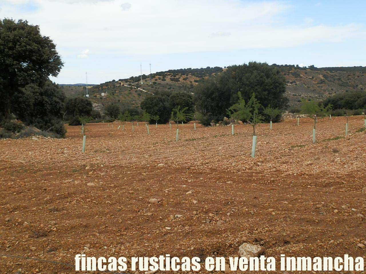 470_fincas-en-venta-048