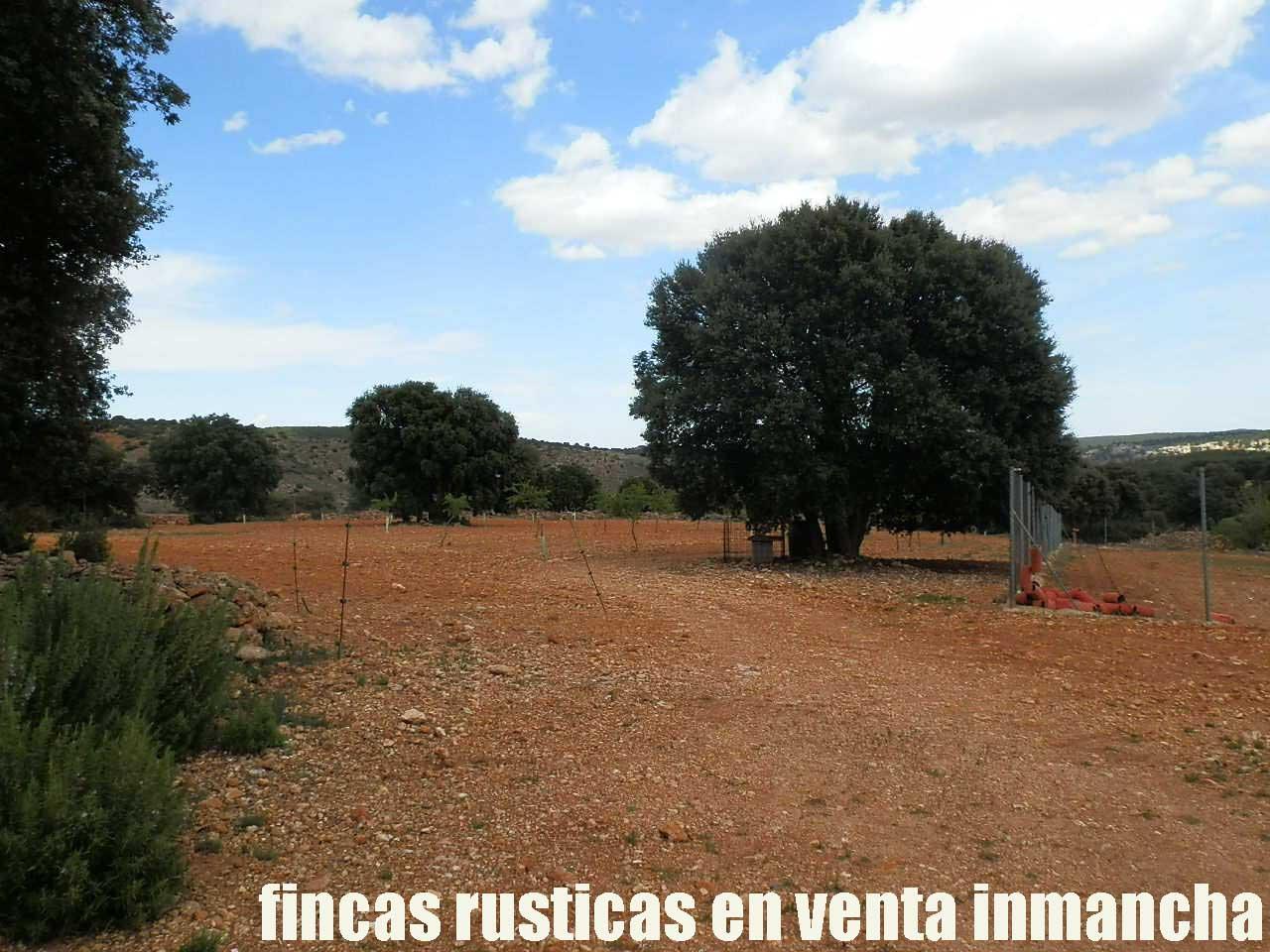 470_fincas-en-venta-051