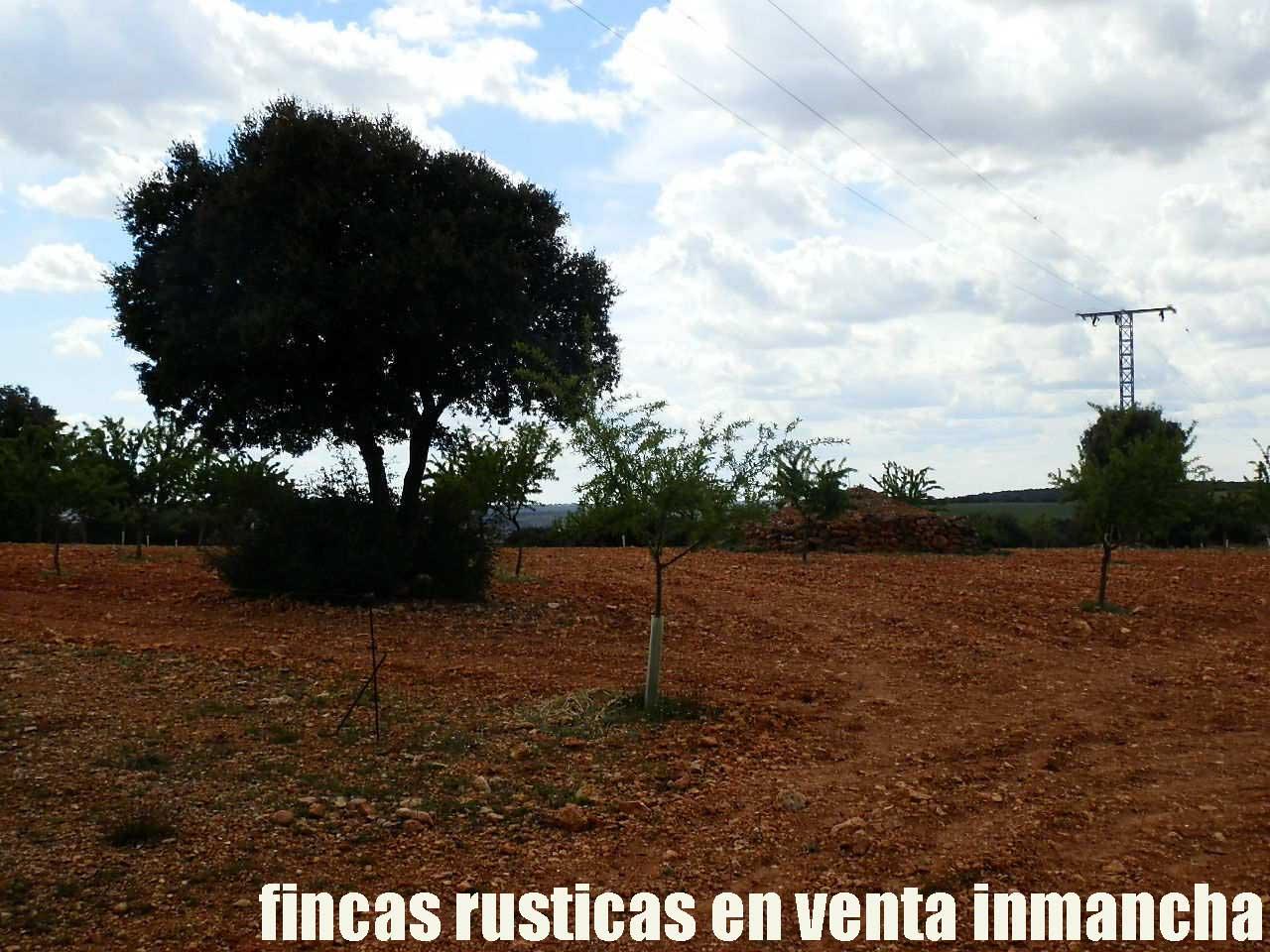 470_fincas-en-venta-053