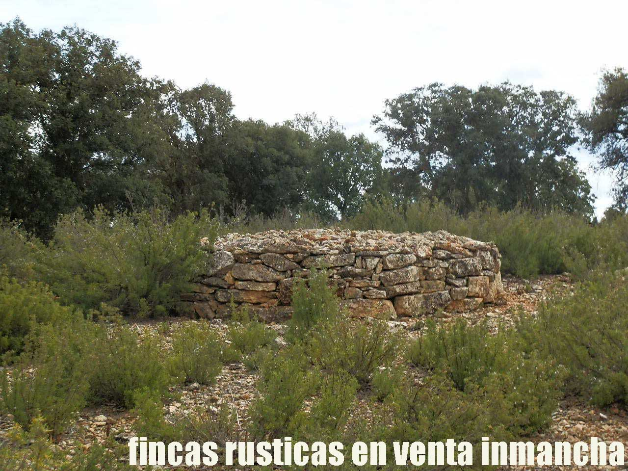 470_fincas-en-venta-055