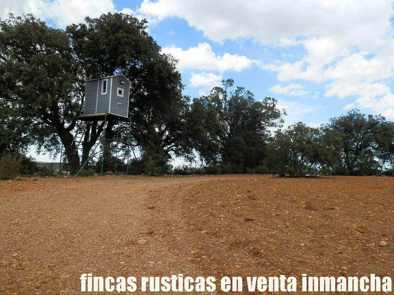 470_fincas-en-venta-062