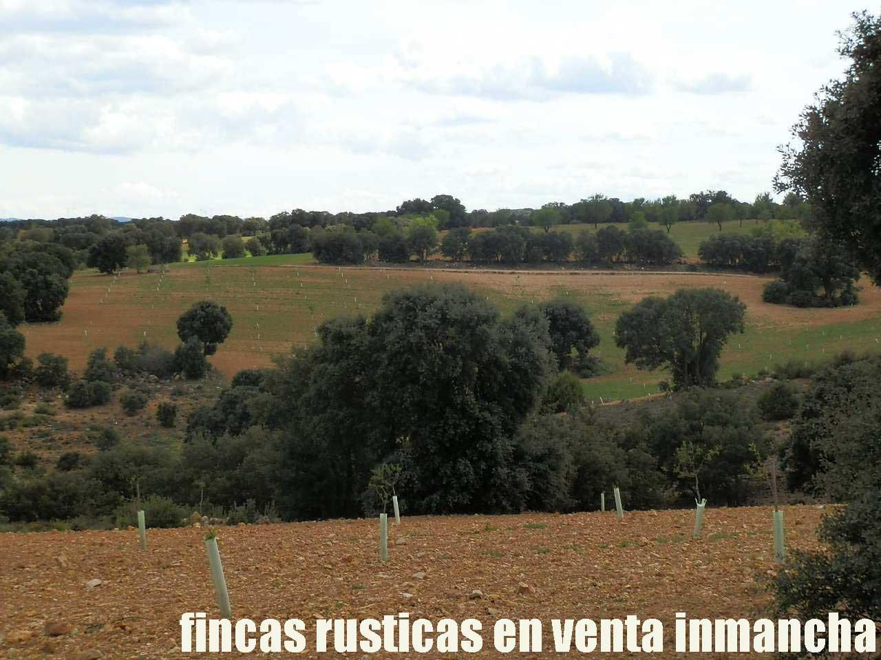 470_fincas-en-venta-064