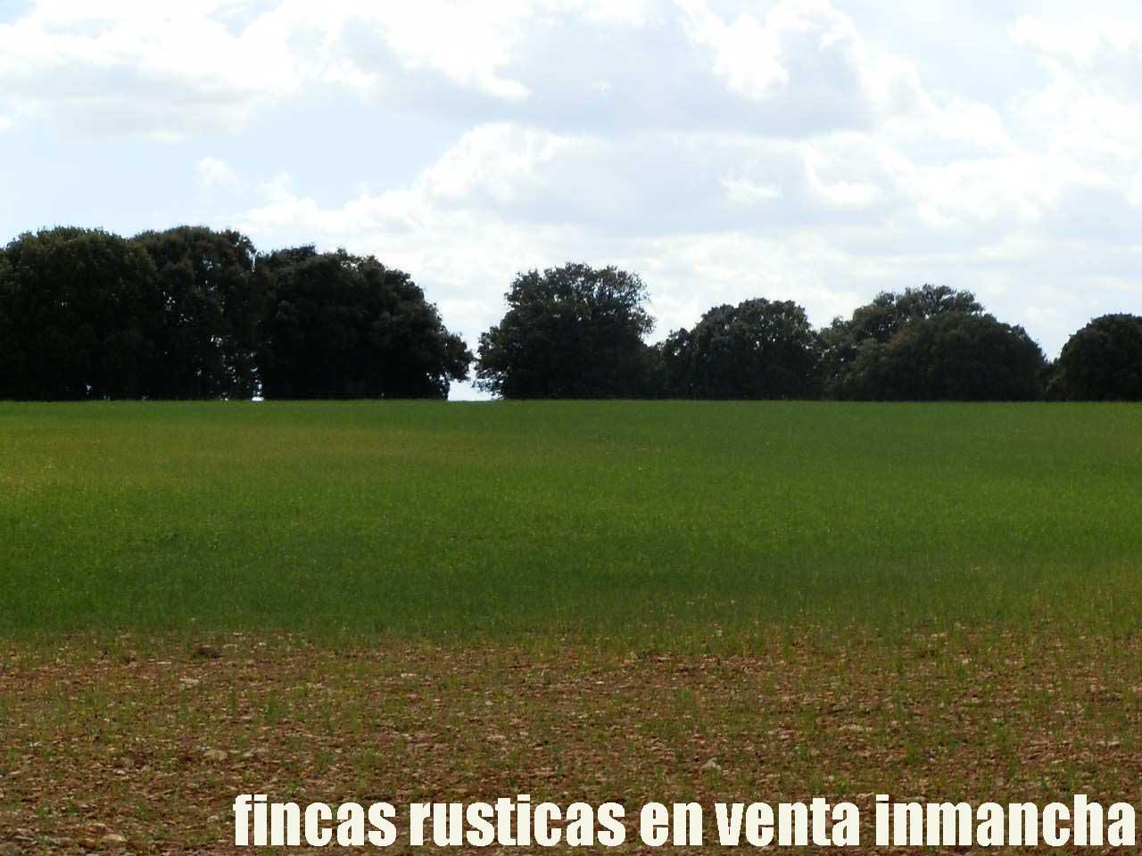 470_fincas-en-venta-066