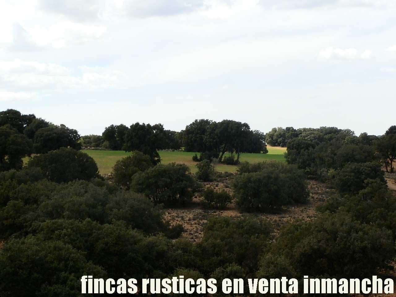 470_fincas-en-venta-076