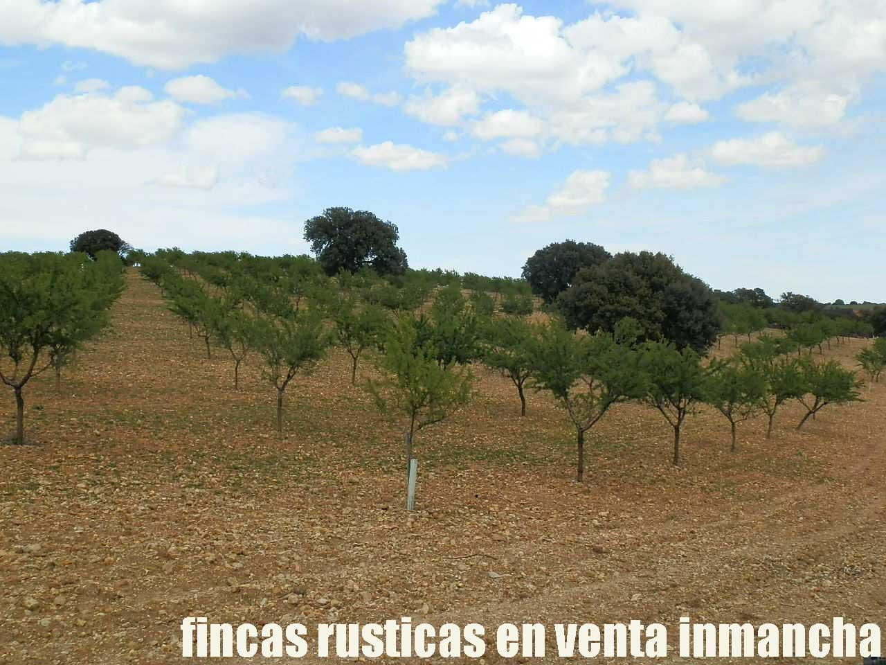 470_fincas-en-venta-077