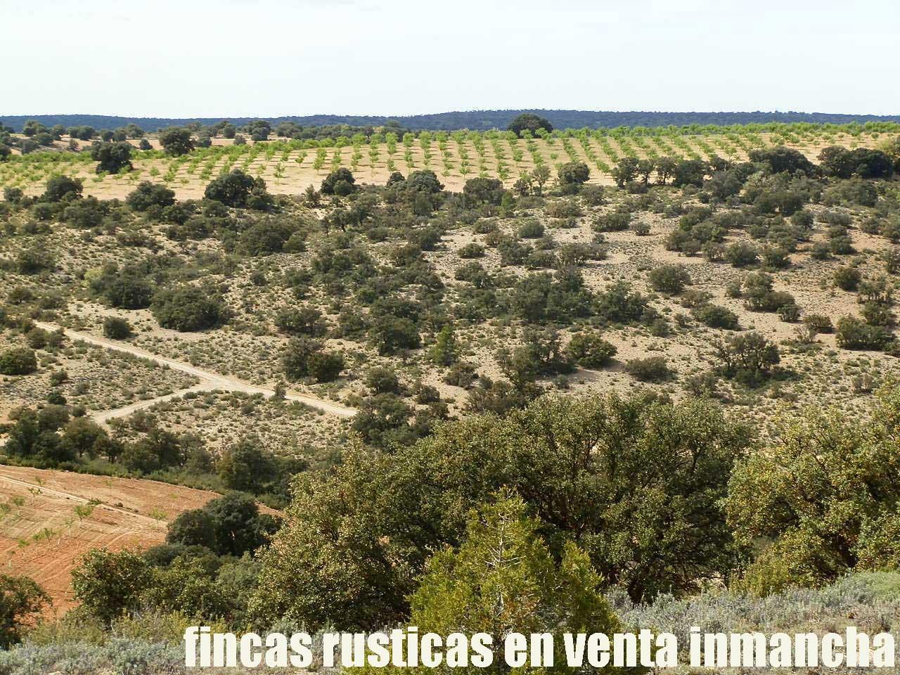 470_fincas-en-venta-085