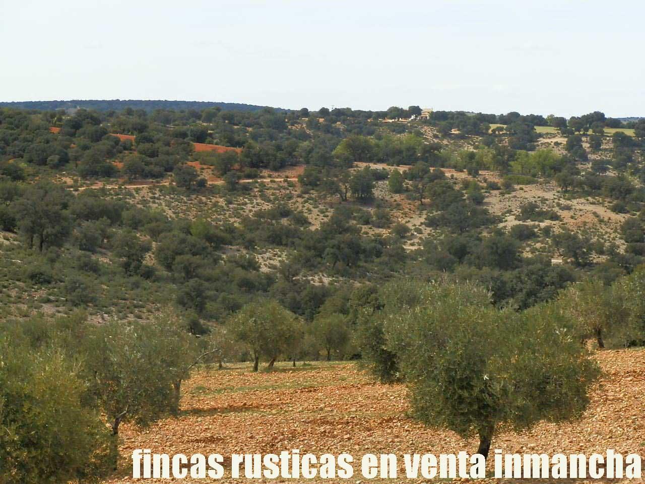 470_fincas-en-venta-087