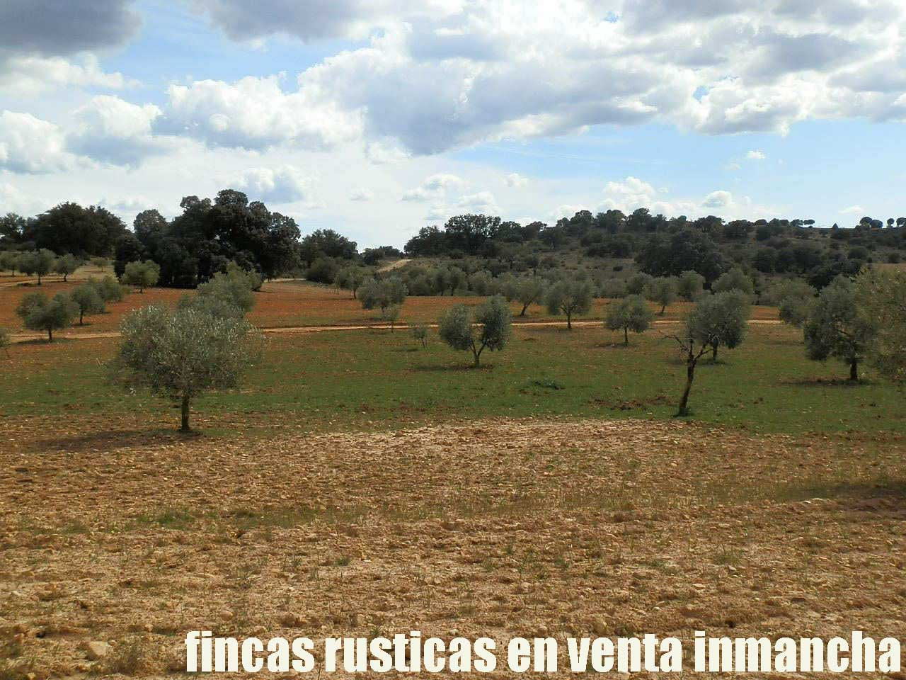470_fincas-en-venta-093