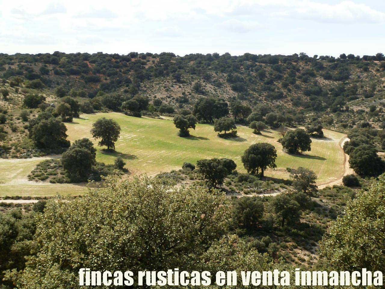 470_fincas-en-venta-098