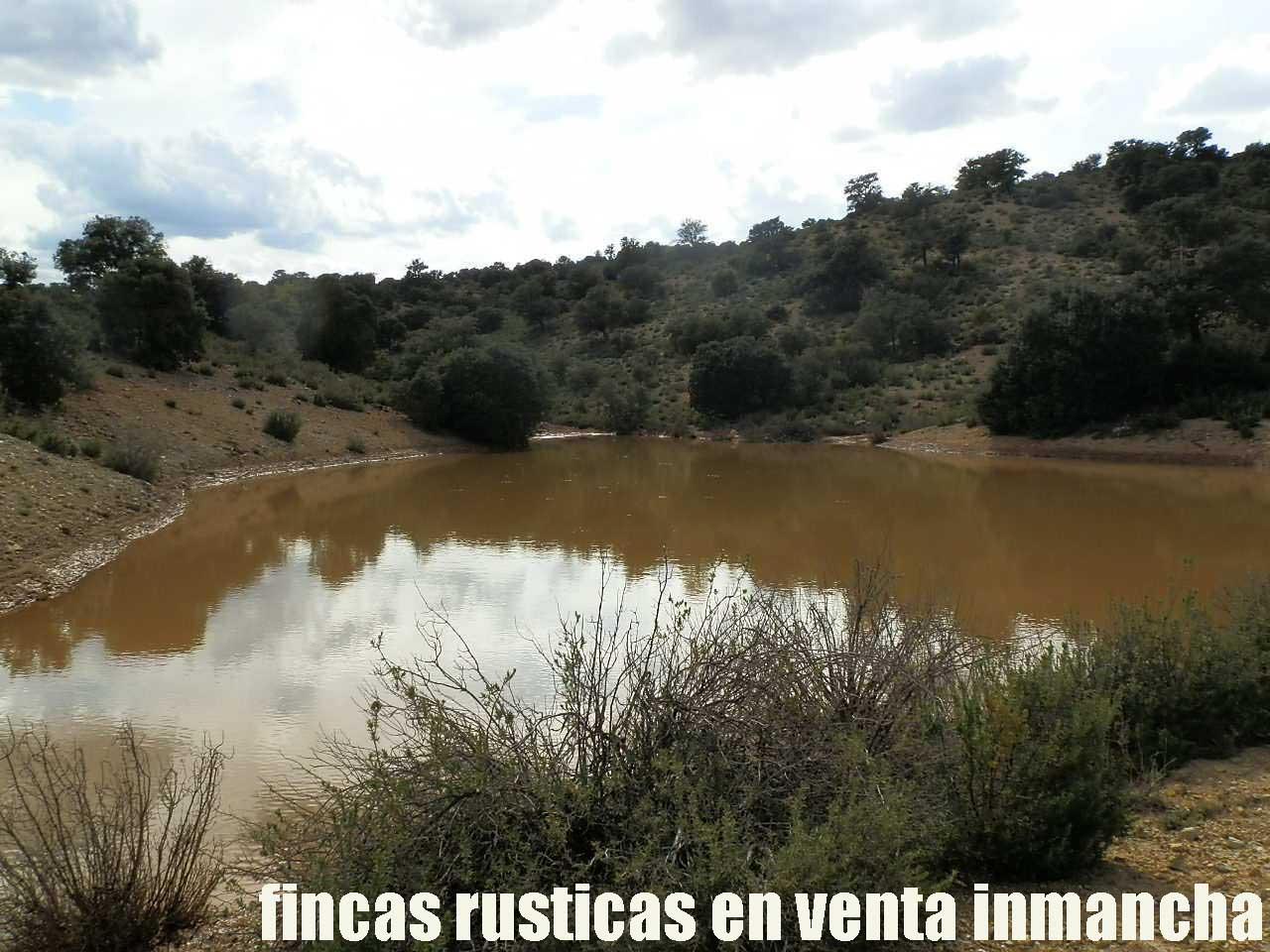 470_fincas-en-venta-102
