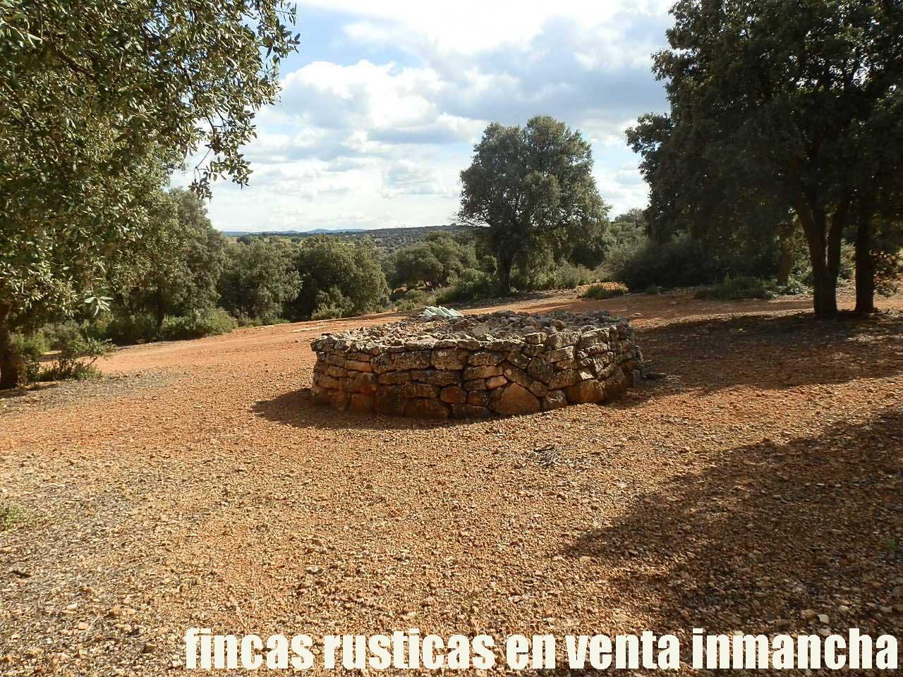 470_fincas-en-venta-104