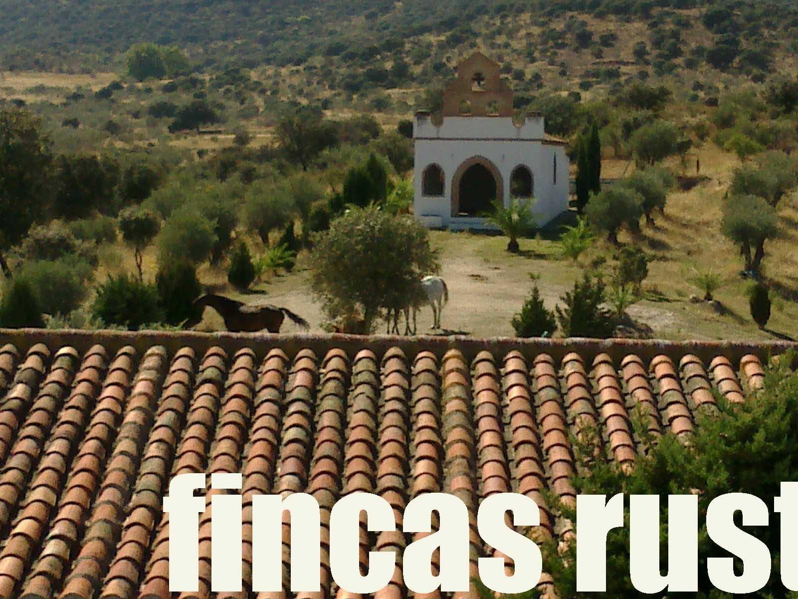 470_fincas-en-venta-12