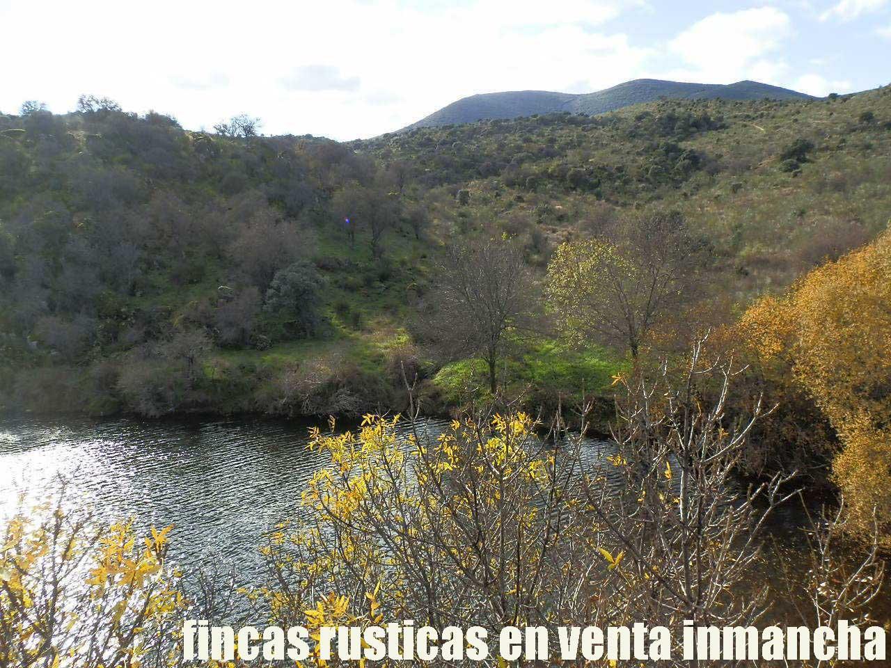 470_fincas-en-venta-17