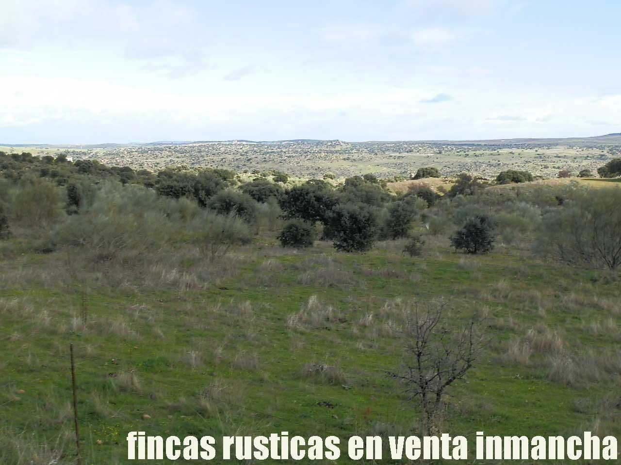 470_fincas-en-venta-18