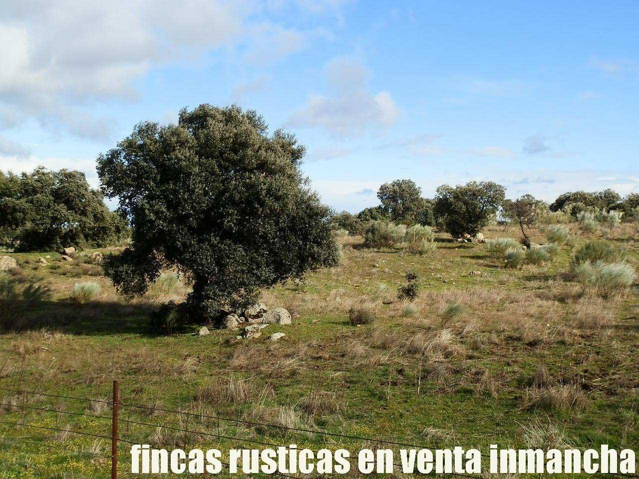 470_fincas-en-venta-24